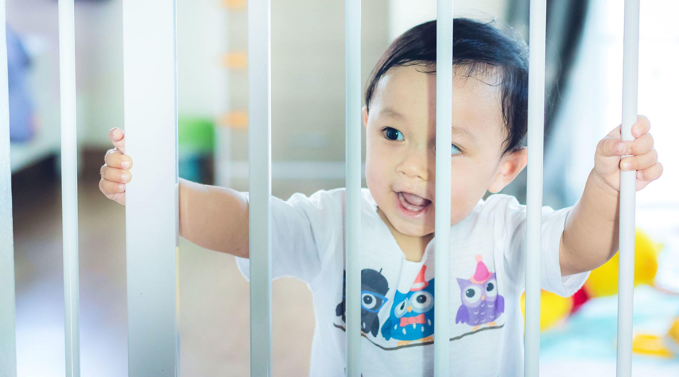 Safety First: Why Baby Doors Are Important